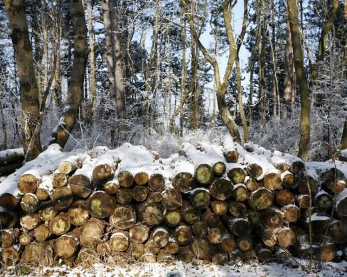Пиломатериалы из зимнего леса